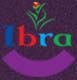 IBRA Group